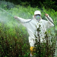 (English) Stop Glyphosate: say no to the herbicide for our health's sake!
