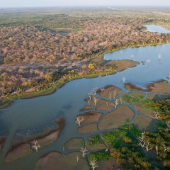 (English) Tanzania presses on with hydroelectric dam on vast game reserve