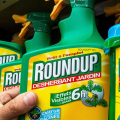 New report claims glyphosate has 'serious adverse' health effects